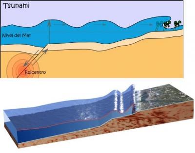 Resultado de imagen para como se forma un tsunami