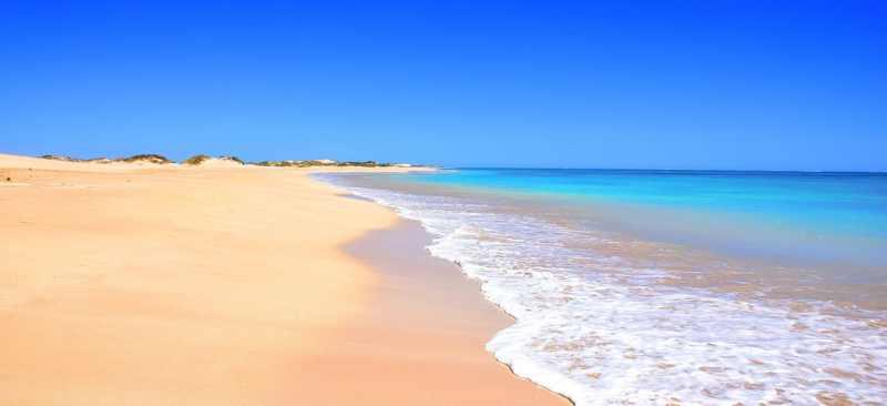 Paradis pour un digital nomade. Travailler en free-lance depuis une plage immaculée est une consécration.