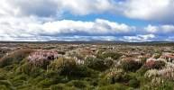 Photo de paysage de Tasmanie en randonnée road trip sur l'île