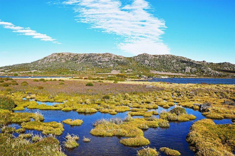 Parc National Walls of Jerusalem, Tasmanie guide voyage