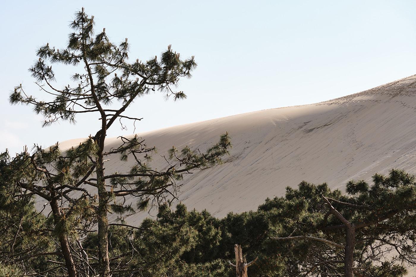 Dune du Pilat et bassin d'arcachon road trip