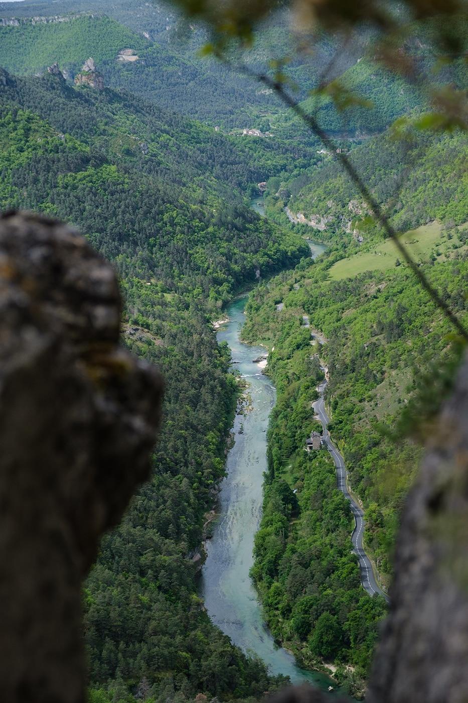Vue sur les Gorges du Tarn depuis le Cinglegros