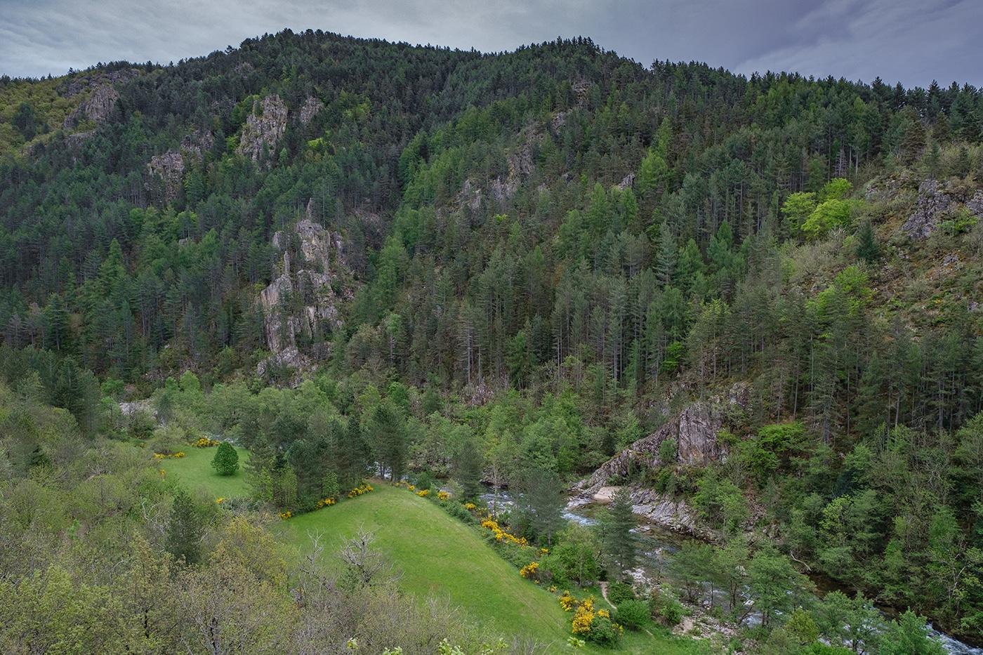 Le Tarn en amont des Gorges