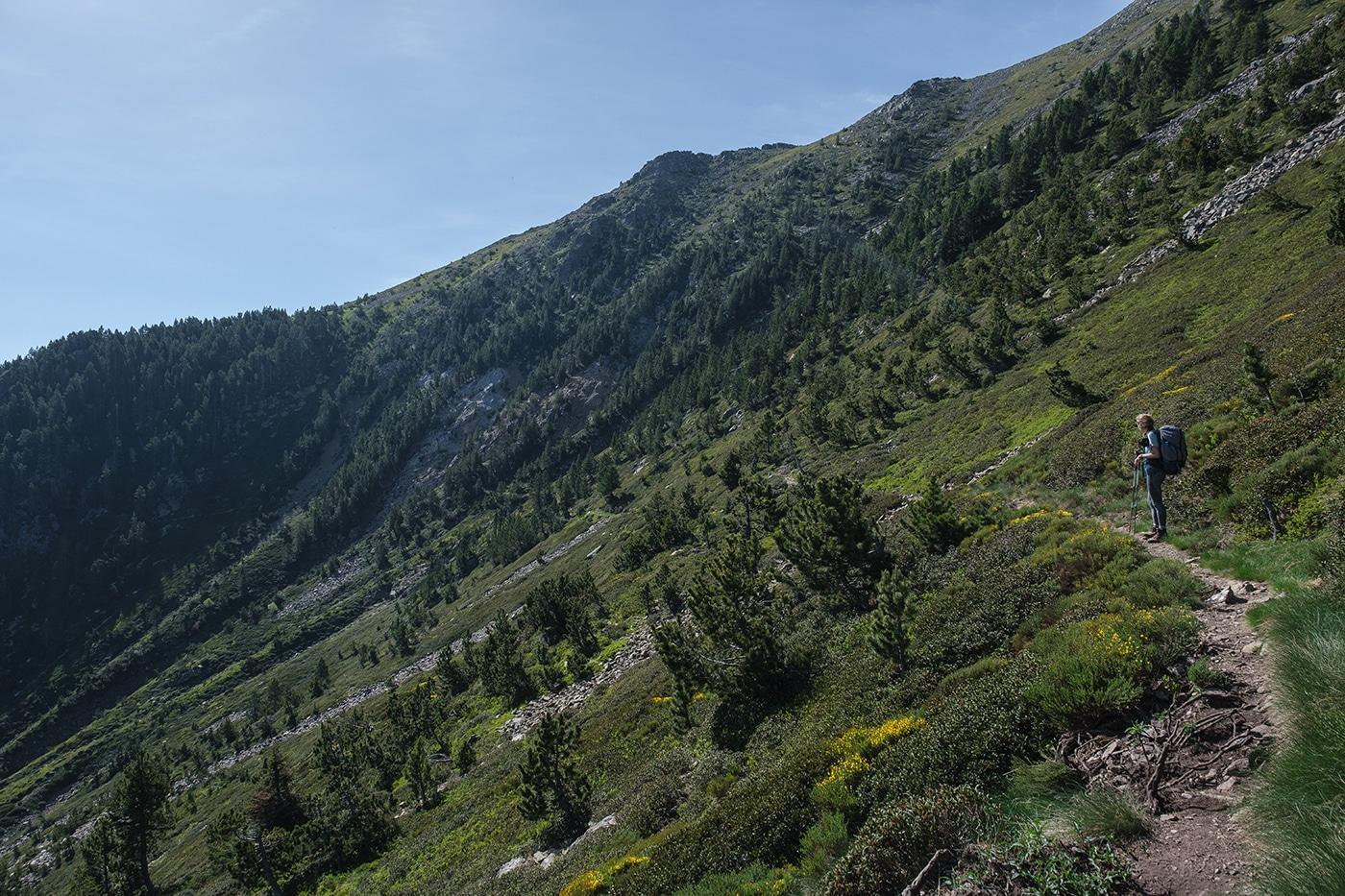 Paysage magnifique des Pyrénées Orientales