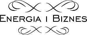 Energia i Biznes logo
