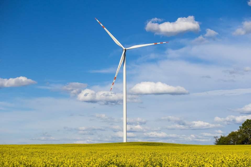Elektrownia wiatrowa fot. Pixabay