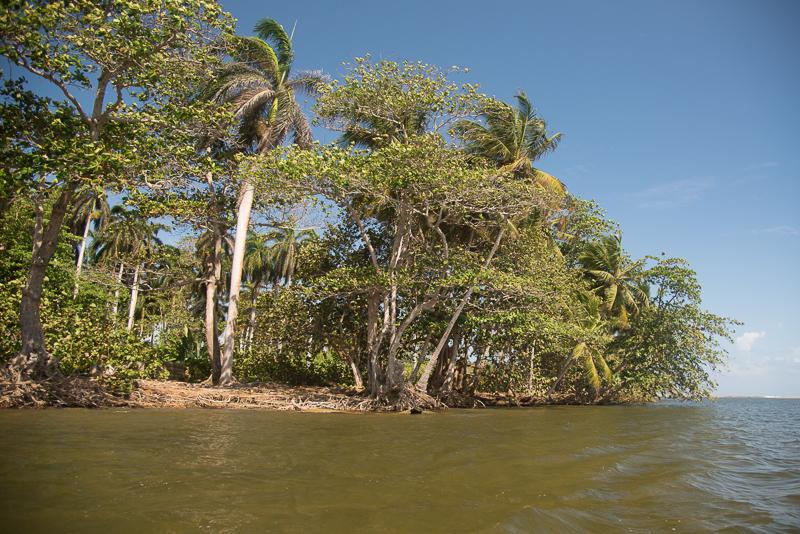 Cuba -Parc naturel del Yunque