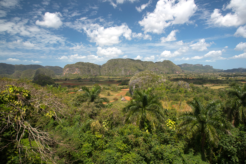 Cuba - Vallée de Vinales