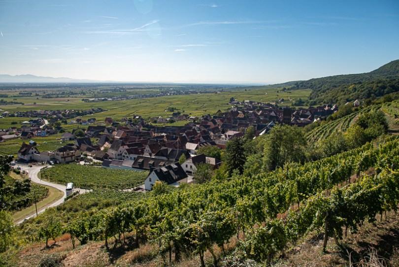 Village d'Alsace au milieu des vignes