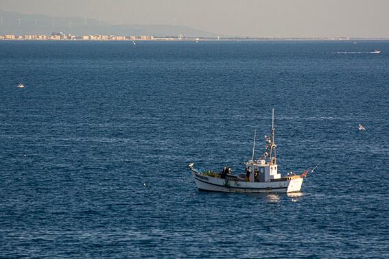 France - Baie de Collioure, bateau de pêche