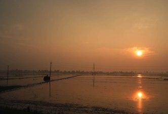 Sonennaufgang über den Reisplantagen