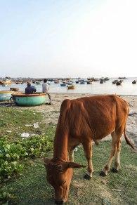 Mui Ne's Fischerhafen