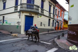 Auf den Strassen Bogotas...