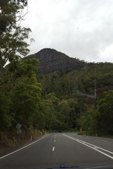 jungle-mountain