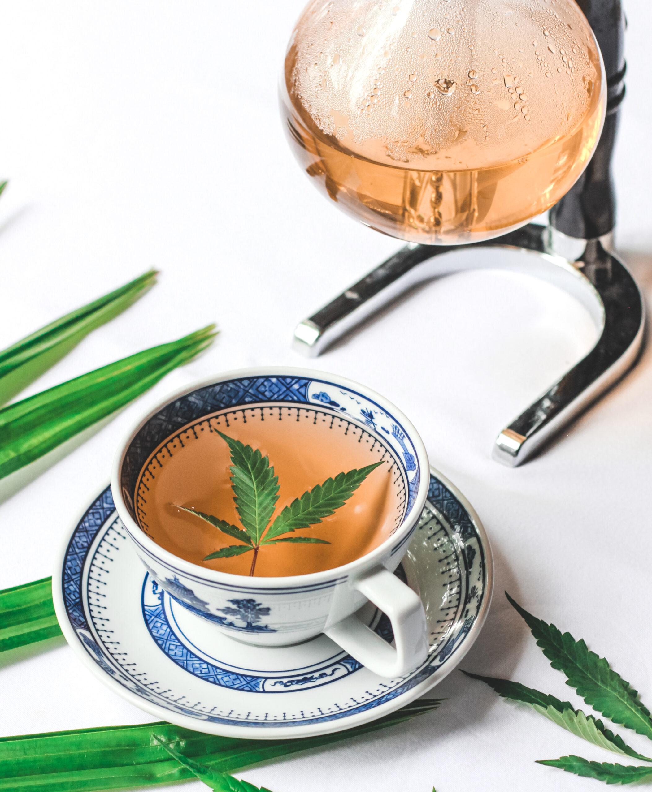 CabDist 1921 scaled Cozinha verde: restaurante tailandês cria menu com infusão de cannabis