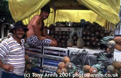 Pinapple sellers in Alegre