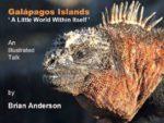 Brian Anderson - Galápagos Islands