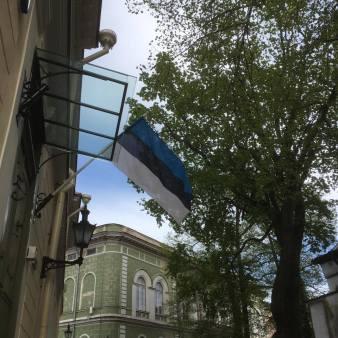 The Estonian flag