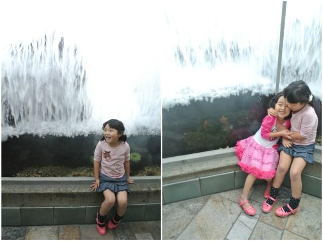 monterey_aquarium2