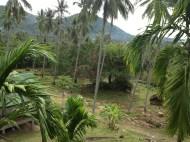 View from my Balcony, Koh Samui, Thailand