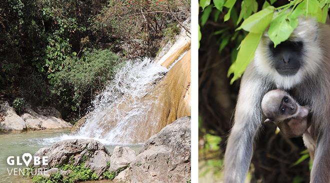 Neer Garh Wasserfall Rishikesh