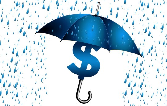 What is Asset Protection?