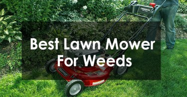 Best Lawn Mower for Weeds