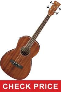 Ibanez PNB14E Electric Guitar