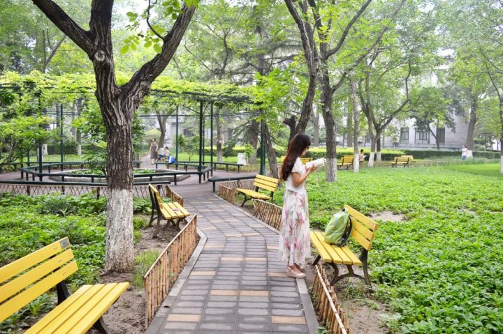 Park in Beijing on a summer day