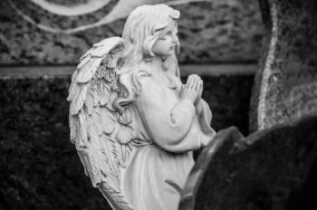 Anjo número 79 e seu significado e simbolismo