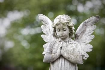 Anjo número 1228 e seu significado e simbolismo