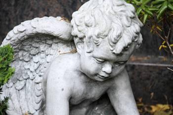Anjo número 5330 e seu significado e simbolismo