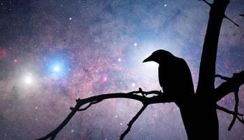7 de julho inteligência e carreira do signo do zodíaco