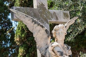 Anjo número 655 e seu significado e simbolismo