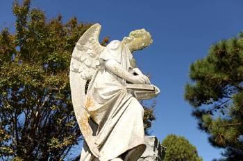 Anjo número 842 e seu significado e simbolismo