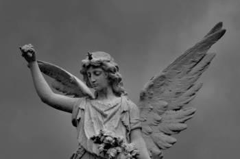 Anjo número 50 e seu significado e simbolismo