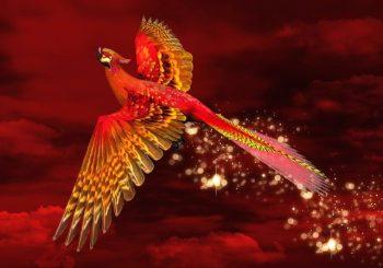 Significado e interpretação do Guia do Espírito Animal Fênix