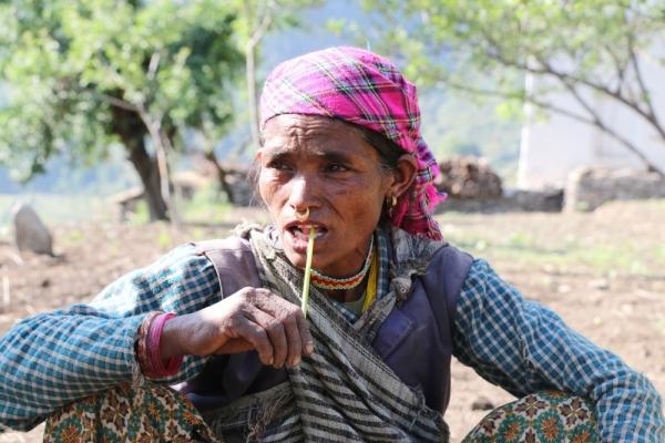 apple farming Nepal 2