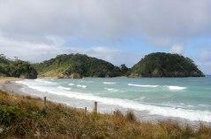 Tutukaka coast - Matapouri bay