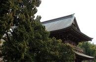Kamakura - Kencho-ji