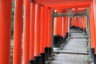 Kyoto - Fushimi Inari Taisha