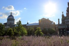 montreal_4893