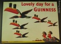 DB - Guinness 31