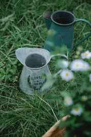 pots on grass near basket with chamomiles in nature