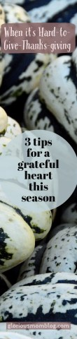 When it's Hard-to-Give-Thanks-giving: 3 tips for a grateful heart this season. Check it out at gloriousmomblog.com.