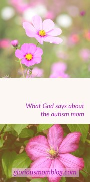 A tribute to all the autism moms: an inside peek at the life of an autism parent and the struggles they face. Read all about it at gloriousmomblog.com.