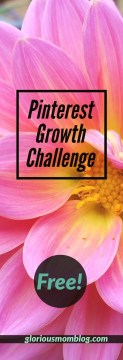 Pinterest Growth Challenge: Are you a blogger trying unsuccessfully to use Pinterest to grow your blog? Or maybe you've had some success, but you want more consistent results? This free Pinterest challenge is perfect for you! Receive an email series with a daily prescription for Pinterest including steps to gain more followers, get on group boards, improve your SEO, make better pins and more.