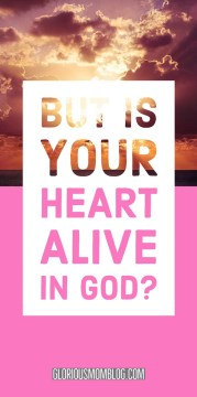 But is your heart alive in God? Are you thriving or struggling? Is your life full of joy and peace or anxiety and depression? This post helps you gauge your spiritual walk with God. Read it at gloriousmomblog.com.