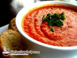 Easy Tomato and Eggplant Soup