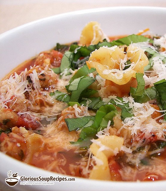 Recipe For Hearty Lasagna Soup